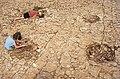 Alésia site archéologique - fouilles au sud du camp C.jpg