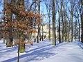 AlexandriaPark winter.jpg