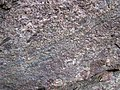 Alluvial polymict conglomerate (Mount Rogers Formation, Neoproterozoic, 750-760 Ma; Fox Creek roadcut, west of Troutdale, Virginia, USA) 30 (30383036412).jpg