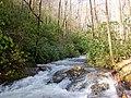 Along the Creek 2 - panoramio.jpg