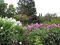 Aménagement paysager, dans les Jardins de Métis, Grand-Métis, Qc - panoramio (12).jpg