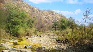 Todgarh-Raoli Sanctuary - Image: An inside view of Todgargh Rawali Sanctuary