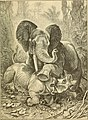 Animals in action; studies and stories of beasts, birds and reptiles; their habits, their homes and their peculiarities (1901) (14569024357).jpg
