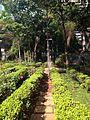 Another view of Paulista Cultural Park's Garden.jpg