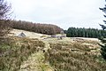 Approaching Beehive Bothy at Laggangarn on Southern Upland Way - panoramio.jpg