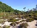 Aqueduto de Pontes 09.jpg