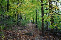 Arboretum Madison Wisconsin 0585.jpg