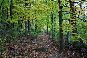 University of Wisconsin–Madison Arboretum - University of Wisconsin–Madison Arboretum