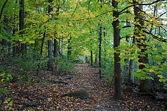 University of Wisconsin–Madison Arboretum - University of Wisconsin–Madison Arboretum