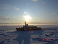Arct0201 - Flickr - NOAA Photo Library.jpg