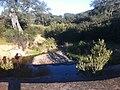 Arroyo del Madroño - panoramio.jpg