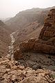 Ashalim stream (Nahal Ashalim), Judean Desert, Israel (1).jpg