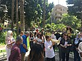 Association of lovers of trees walk at Al Maadi , photo by Hatem Moushir 1.jpg