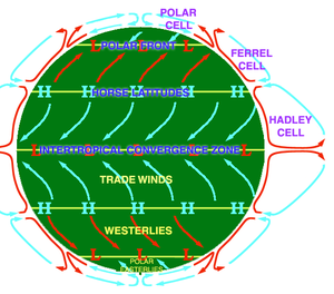Atmospheric circulation - An idealised view of three large circulation cells showing surface winds