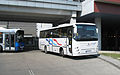 Autosan A0909L Tramp and Jelcz bus.jpg