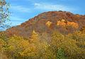 Autumn-hill.jpg