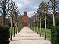 Avenue of trees at Coughton Court - geograph.org.uk - 466668.jpg
