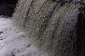 Aysgarth Falls MMB 14.jpg