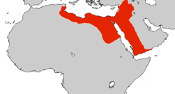 Ayyubid Greatest Extent 1188.png