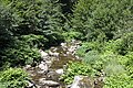 Bad Rippoldsau-Schapbach IMG 3079.jpg