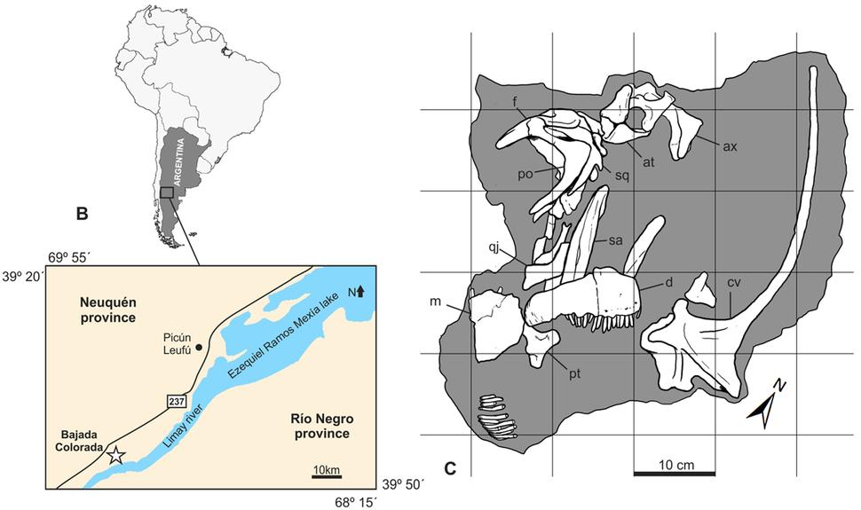 Bajadasaurus maps