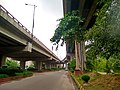 Banani Overpass, Dhaka.jpeg