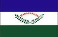 Bandeira-manacapuru.jpg