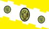 Flag of Comayagua