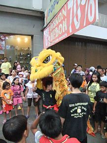 A man holding a dragon costume over his head amidst a large crowd