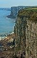 Bempton Cliffs RSPB nature reserve.jpg