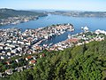 Bergen panoramic view.jpg