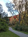 Betty Sutherland Trail - 20191014 - 05.jpg
