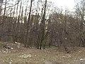 Bezhitskiy rayon, Bryansk, Bryanskaya oblast', Russia - panoramio (103).jpg