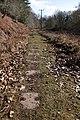 Bicslade Tramroad stone sleepers.jpg