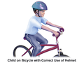 Bicycle Helmet - Correct Placement.png