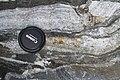 Biotite-muscovite Orthogneiss in Geopark on Albertov.JPG
