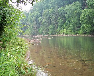 Black Fork (Cheat River tributary) - Image: Black Fork Parsons