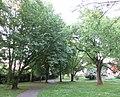 """Blick in Richtung Rosengasse - Grünanlage """"Botanischer Garten"""" mit wertvollem Baumbestand - Eschwege - panoramio.jpg"""