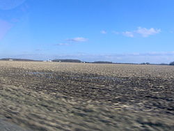 Bloomfield Township consists generally of flat farmland with scattered copses of trees