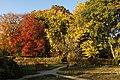Botanic Garden - Cluj-Napoca (4115118485).jpg