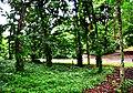 Botanic garden limbe89.jpg