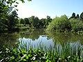 Botanischer Garten See.jpg