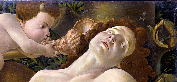 Detail of Botticelli's Venus and Mars, 1485, with a wasp's nest on right, probably a symbol of the Vespucci family who commissioned the painting. Botticelli-Venus and Mars (cropped).jpg