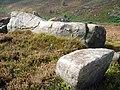 Boulders - geograph.org.uk - 237007.jpg