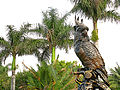 Bronze Parrot Statue behind Tropical Palms.jpg