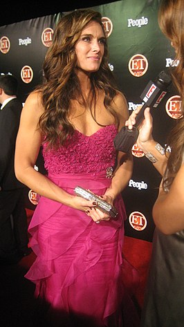 Brooke Shields in 2008