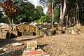 Bukit Brown Cemetery, Singapore - 20110326-02.jpg
