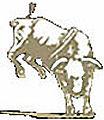 Bull large.jpg