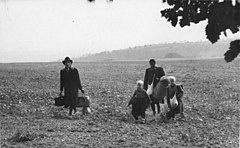 Two adults and two children carrying suitcases across an open field