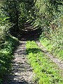 Byway, Snap - geograph.org.uk - 248594.jpg